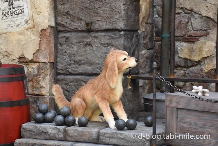 ディズニーシー パイレーツサマー フォトロケーション1  犬